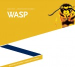 Wasp Work Study